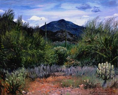 Sonoran Desert - Print - Black Mountain - canvas print 40x50 $925 : click to enlarge