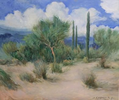 SONORAN DESERT - Desert Path 30x36 - $9600: click to enlarge