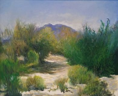 SONORAN DESERT - Sonoran Summer Day 20x24 - $4600: click to enlarge