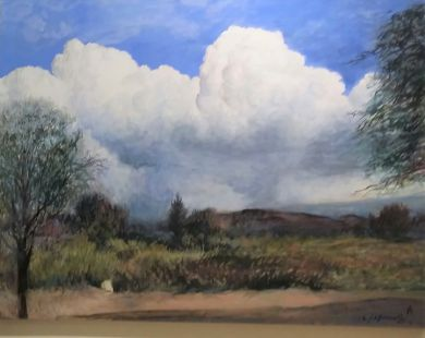 SONORAN DESERT - Sonoran Clouds 36x48 - $14,500: click to enlarge
