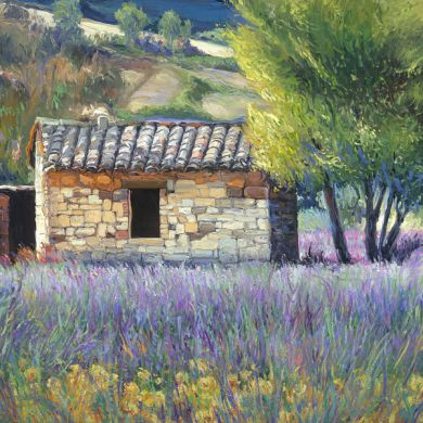 Italy - Print - Tuscan Lavender - 0 canvas available - may be ordered - paper prints available: click to enlarge