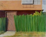 THE WALLS of Mexico series - PARED DE CACTUS 23x29 - $6500