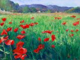 Italy - Print - Tuscan Poppy Field -0 canvas available - may be ordered - paper prints available