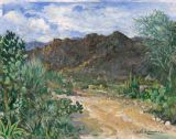 Sonoran Desert - Print - Path to Black Mountain - 30x40 canvas $1140 -  paper prints available